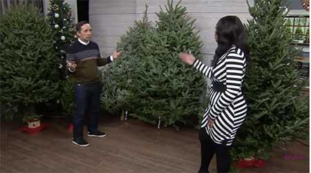 Os-Costumes-e-Hábitos-no-Canadá-arvore-de-Natal-de-Verdade
