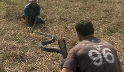 Salário Mínimo na Nova Zelândia nao tem cobra